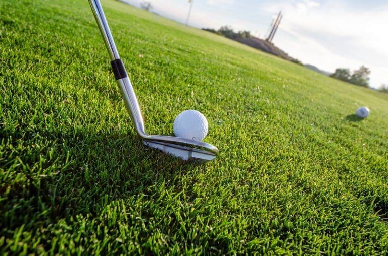 Callaway Golf X20 Irons